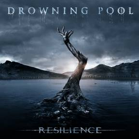 drowning pool cover