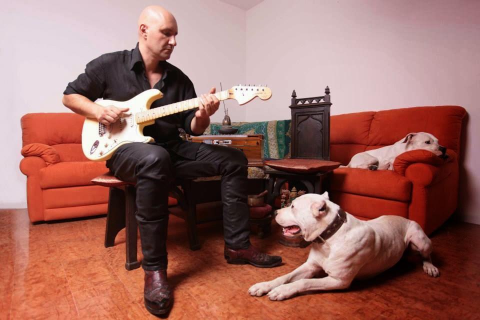 zamberlin_dogs